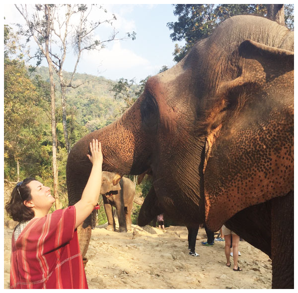 Amelia receiving the teachings of Majoon, a pregnant elephant in Thailand.