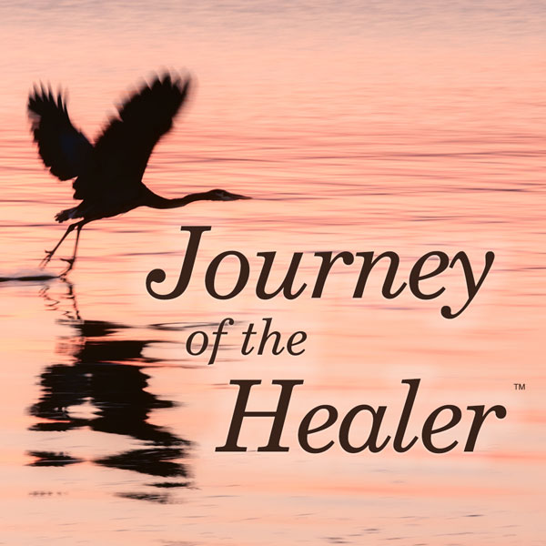 Journey of the Healer™ - Amelia Vogler